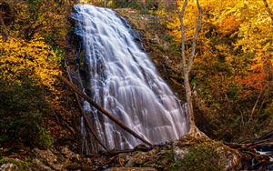 Crabtree Waterfall in Virginia US Nature Wallpaper